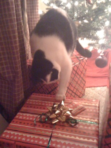 Zoe playing with ribbon B